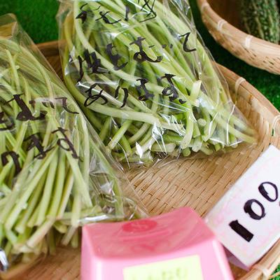 直売所では季節の野菜が揃っております