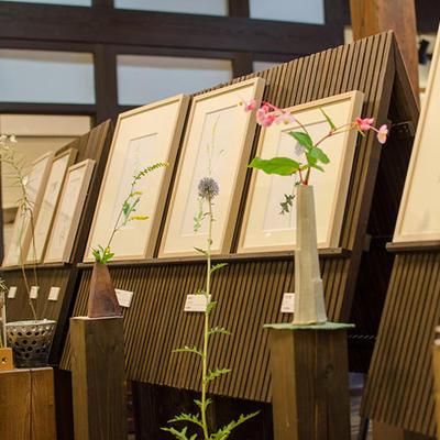 季節の花を描いた水彩画の隣には実際の花を飾っております。あわせてお楽しみください。